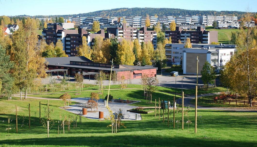 Det er en klar tendens til at norskfødte barn av ikke-vestlige innvandrere som har vokst opp i nabolag med høy innvandrerandel har bosatt seg i tilsvarende nabolag når de er voksne, ifølge Pål Oskar Hundebo. (Foto: Helge Høifødt/Wikimedia commons CC BY-SA 3.0)