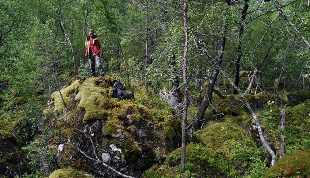 Gamle skredmasser fra Mannen i Romsdalen er datert. På bildet ser vi lagleder Reginald Hermanns på en diger blokk. (Foto: NGU)