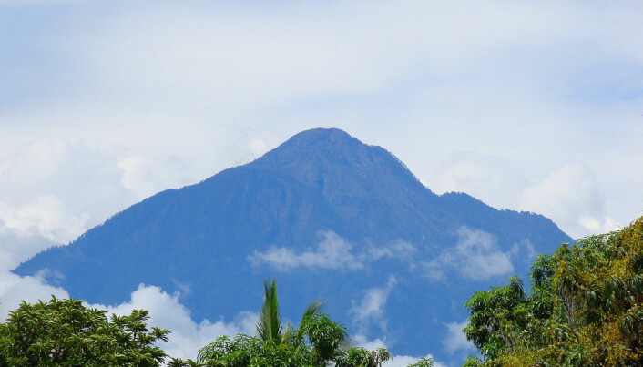 Tacaná-vulkanen. Den er over 4000 meter høy. (Bilde: eduardo.robles/CC-BY 2.0)