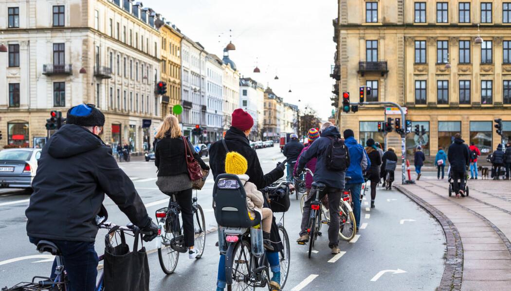 Displinerte syklister i København. Men pass på at du ikke tråkker i sykkelveiene deres. (Foto: lkoimages / Shutterstock / NTB scanpix)