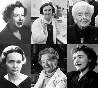 6 av de 20 kvinnene som siden 1901 har fått nobelpriser i fysikk, kjemi eller medisin. Øverst fra venstre: Maria Goeppert-Mayer, Rosalyn Sussman Yalow og Rita Levi-Montalcini. Nederst fra venstre: Irène Joliot-Curie, Gertrude B. Elion og Gerty Cori. (Foto: Wikimedia/videnskab.dk)