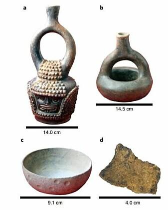 Keramikkgjenstander funnet i Ecuador. Alle inneholdt spor av kakao, og potteskåret nederst til venstre hav spor som var hele 5300–5450 år gamle. (Foto: Zarrillo et al./Nature Ecology and Evolution.)