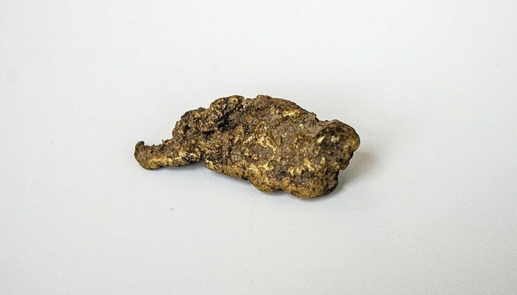 Gullklumpen veier 34,9 gram. (Foto: Filip Gundersen / NGU)