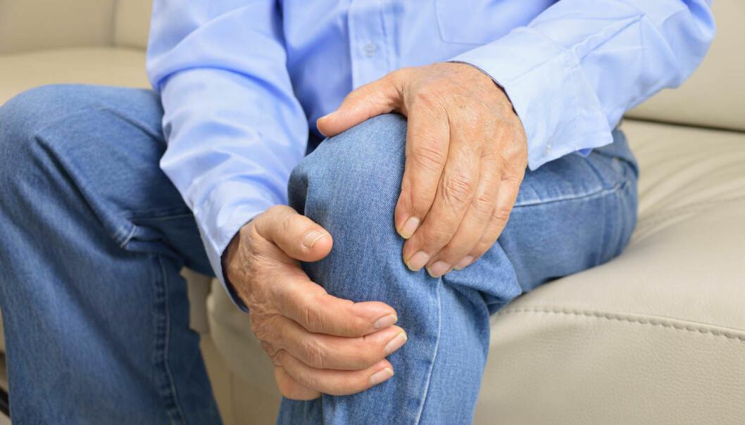 Slitasjegikt i kneet er blitt svært vanlig. Trolig finnes det ukjente miljøfaktorer bak, tror forskere etter å ha studert levningene etter over 2000 døde mennesker.   (Foto: cunaplus / Shutterstock / NTB scanpix)