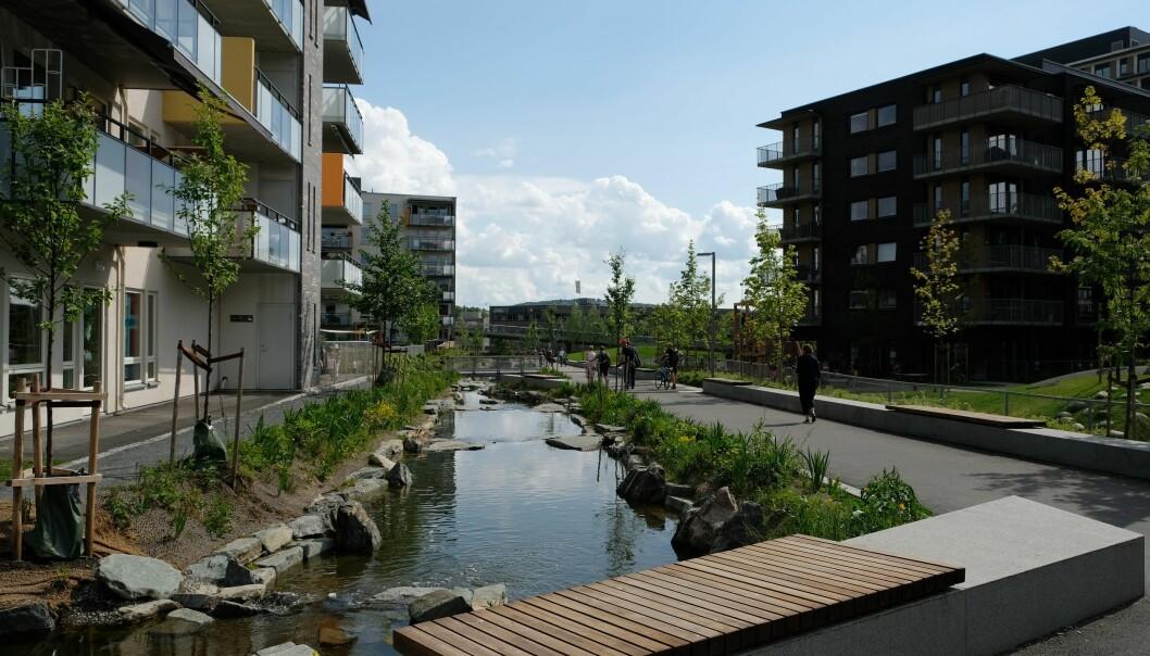 Hovinbekken renner gjennom Oslo. Men da byen ble bygget ut, ble store deler av den lagt under jorda. Nå har deler av bekken blitt gjenåpnet.  (Foto: NIBIO)
