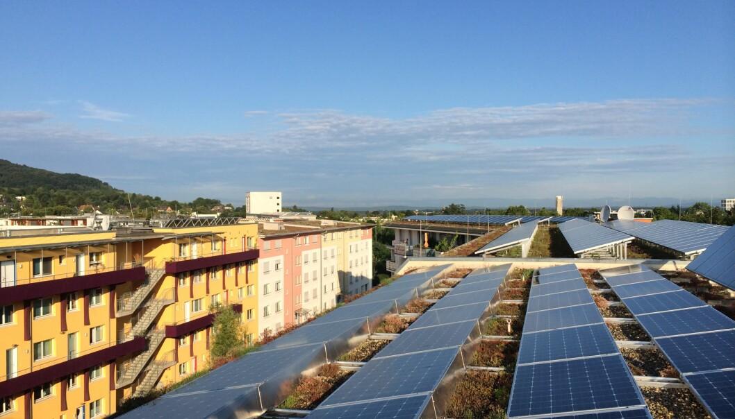 Bildet er fra den tyske bydelen Vauban som satser på bygninger med lavt energiforbruk.  (Foto: Karen Byskov Lindberg)