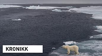 Media mente forskerne avlyste «klimaskrekkscenario»: Dette fant vi da vi gikk studien deres i sømmene