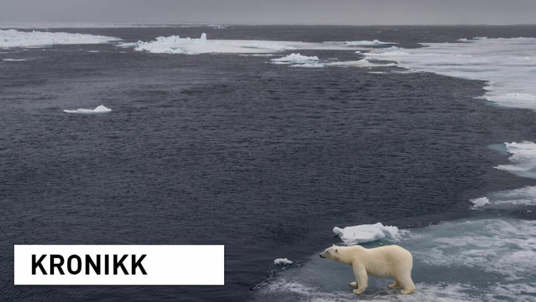 - Vår vurdering er at vi nok må leve med at konsekvensene av vår tukling med planetens klima fortsatt er forbundet med stor usikkerhet og at det er vanskelig på rasjonelt grunnlag å utelukke de mest ekstreme katastrofescenariene, skriver kronikkforfatterne. (Illustrasjonsfoto: Shutterstock / NTB Scanpix)