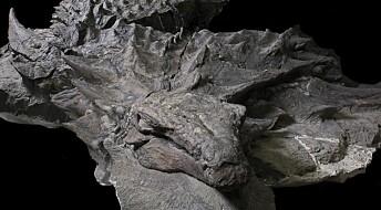 Ekstremt godt bevart dinosaur vitner om uhyggelig fortid