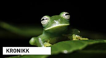 Kartlegger verdens biodiversitet for fremtiden