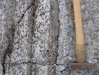 De blankskurte bergene viser oss strukturer i gabbroen som illustrerer hvordan mineraler krystalliserer i magmakammeret dypt i jordskorpen. I dag kan vi se dette som lag med vekslende farge i berget på jordoverflaten. (Foto: Ane K. Engvik)