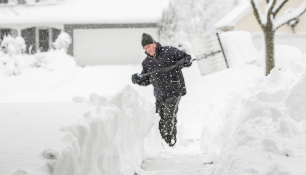 Er det vind og kulde som gir økt risiko for hjerteinfarkt? Eller får været oss til å gjøre risikable ting, som å måke snø? (Foto: Suzanne Tucker / Shutterstock / NTB scanpix)
