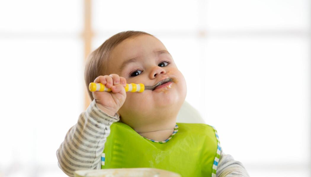 Tarmbakterier påvirkes av hva vi spiser. Men kanskje har de også i seg selv en effekt på risikoen for å utvikle fedme. (Foto: Oksana Kuzmina / Shutterstock / NTB scanpix)