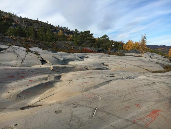 Disse flere tusen år gamle helleristningene fra Alta viser et jeger-sankersamfunn, som er ganske langt fra det vi ser på som norsk i dag. (Foto: Astrid J. Nyland)