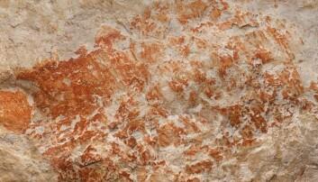 Dette er en av de eldste dyretegningene som noen gang er funnet