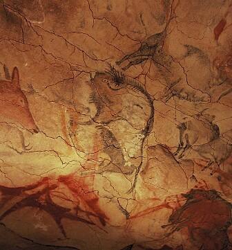 Tegninger av bison-okser fra taket i Altamira-grotten i Spania. De er sannsynligvis flere titusener av år gamle. (Bilde: Yvon Fruneau/CC BY-SA 3.0)
