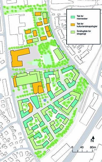 Slik ser Maja Melberg for seg at de ulike taktypene fordeles i utbyggingsområdet Vollebekk i Groruddalen. De mørkegrønne er for mennesker, de oransje for kulturlandskapsfugl, de lysegrønne for småfugl. (Illustrasjon: Maja Melberg)