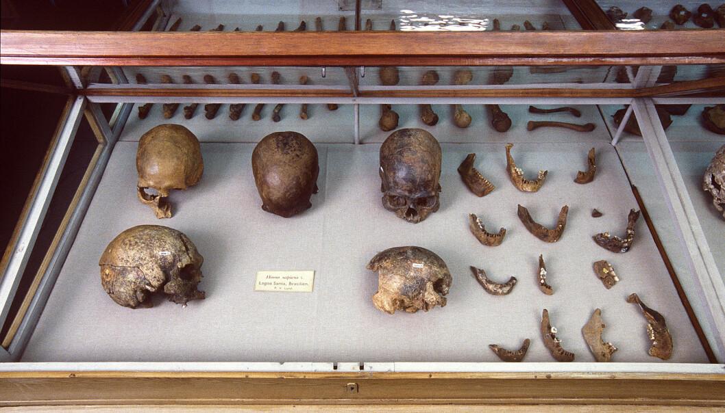 Tilbakeviser teori om de mystiske «paleoamerikanerne»