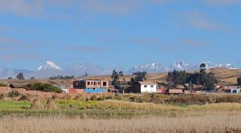 Potet-gen kan ha stålsatt de første Andes-folkene for livet i høyden