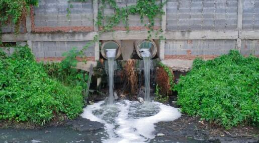 Bakterier kan rense forurenset vann