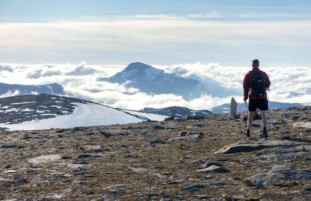 Trollheimen landskapsvernområde har grunneigarar, nærings- og interesseorganisasjonar i styret. Her ser du toppen av Blåhøa med Snota i bakgrunnen. (Foto: Gorm Kallestad / NTB scanpix)