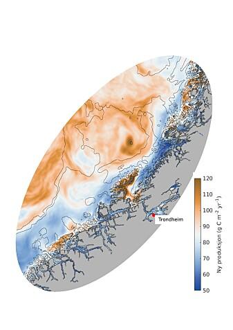 Dette kartet viser hvor havet er mest produktivt utenfor Trøndelag og Møre. På PC kan du trykke på forstørrelsesglasset for å gjøre kartet større. (Data og kart: SINMOD)