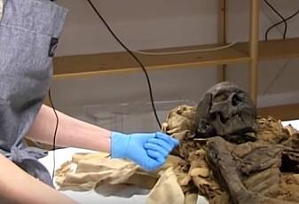 Se hva ekspertene fant ut om den 2700 år gamle mumien