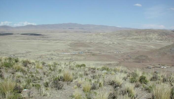 Omgivelsene omkring Jiskariumoko i Peru. (Foto: Mark Aldenderfer)