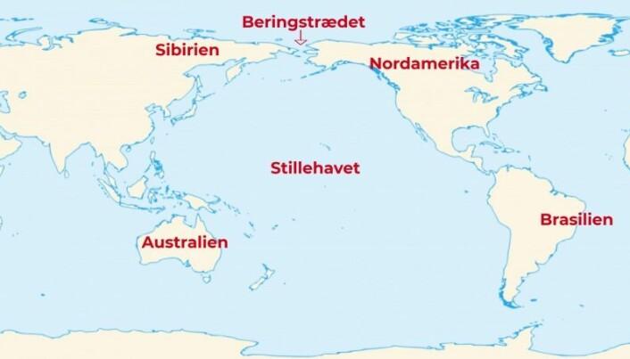 Mysterium: Hvordan har gener fra den delen av Stillehavet der Australia ligger, kommet hele veien til Brasil, hvis de ikke har blitt med over Beringstredet? (Illustrasjon: Sémhur (talk)/videnskab.dk)
