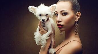 Ny teori om hundens opprinnelse