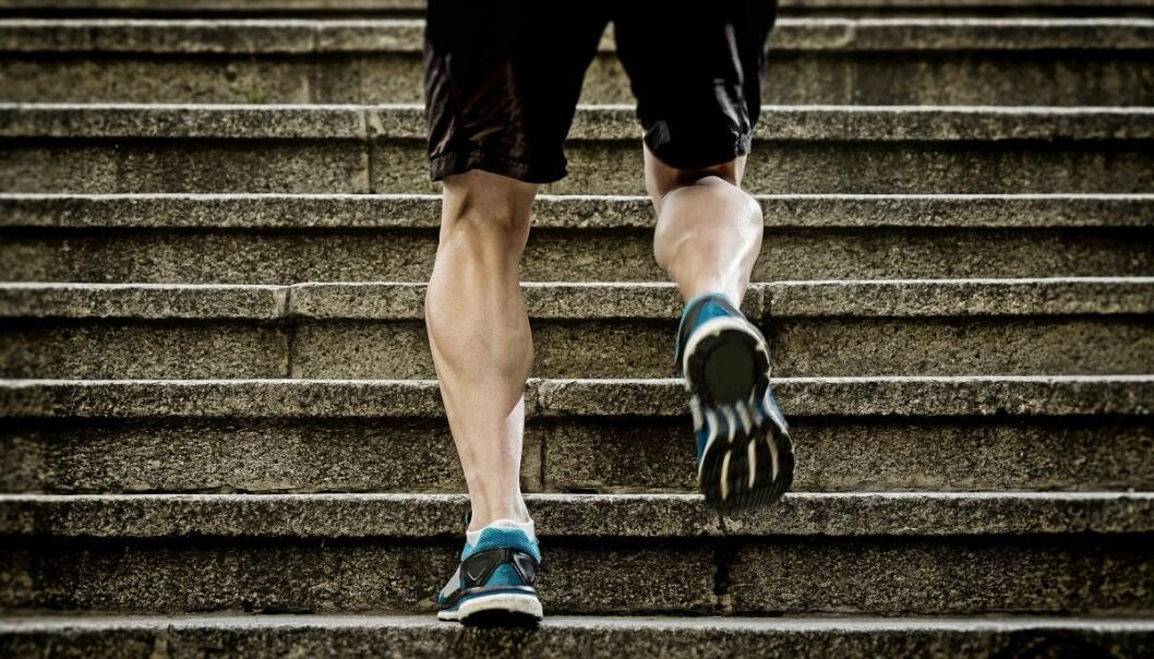 Du trenger ikke svette for å forbrenne fettet. Men det hjelper. (Foto: Marcos Mesa Sam Wordley, Shutterstock, NTB scanpix)