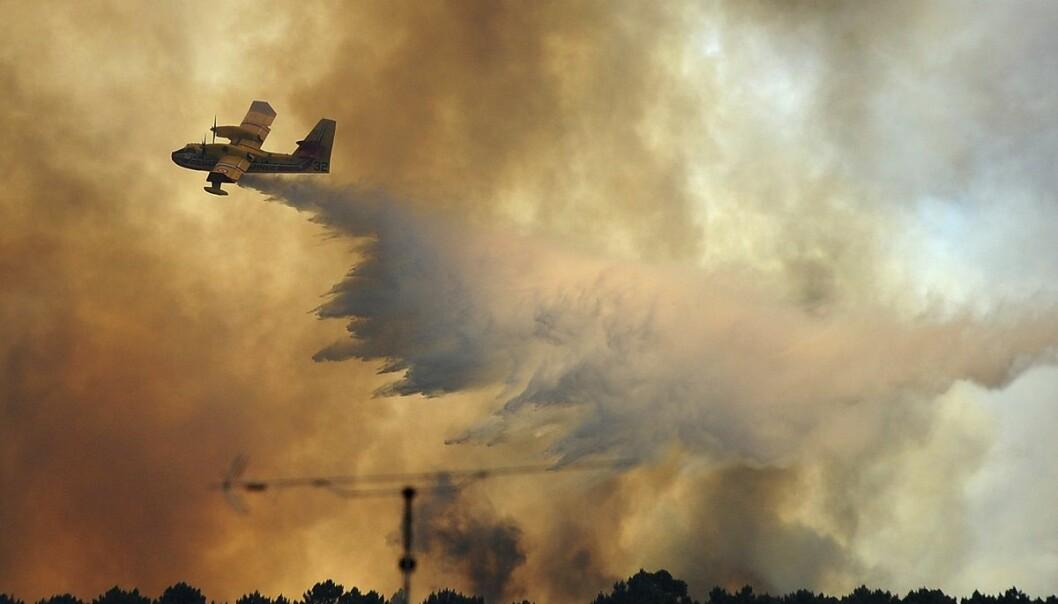Et fly slipper vann over et brannherjet område ved Pedrógão Grande i Portugal i midten av juni. (Foto: AP, NTB scanpix)