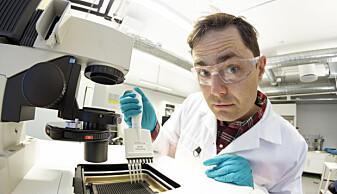 Forsker og biokjemiker Torkild Visnes i laben på Sintef. (Foto: Thor Nielsen)