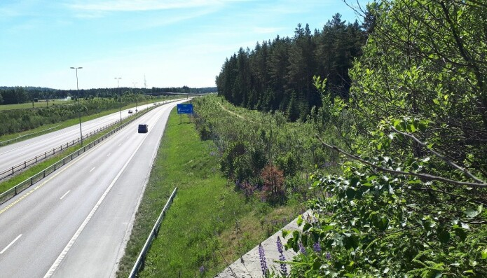 Slik ser det ut da man jobber langs noen av de mest trafikkerte veg i Norge. Her klarte jeg faktisk å få ganske få biler på bildet. (Foto: privat)