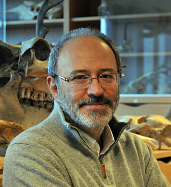 Francesco d'Errico er professor II Centre for Early Sapiens Behaviour, Universitetet i Bergen og Bordeaux. (Foto: UiB)