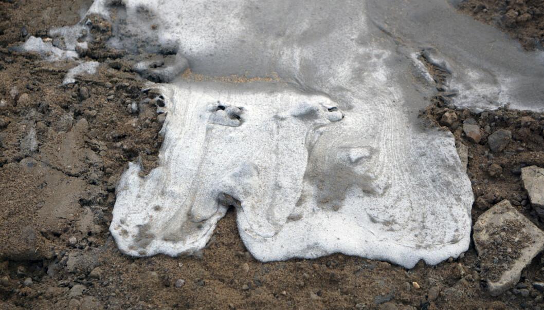Noreg og dei andre nordiske landa fekk god utteljing for midlane dei gav til arbeidsgruppa AMAP som overvaker og samanstiller forsking på det arktiske miljøet, ifølgje forskarar. (Illustrasjonsfoto: baon / Shutterstock / NTB scanpix)