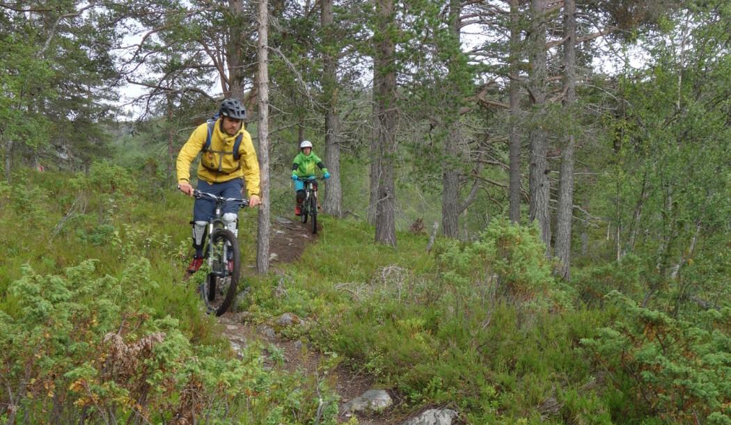 Stisyklister er blant de nye brukergruppene som skal ønskes velkommen inn i nasjonalparkene. (Foto: Marianne Evju)