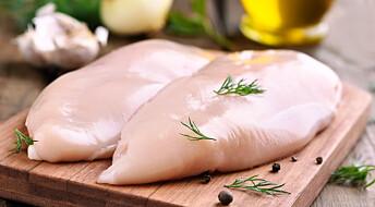 Ny teknologi sorterer gode kyllingbryst fra dårlige