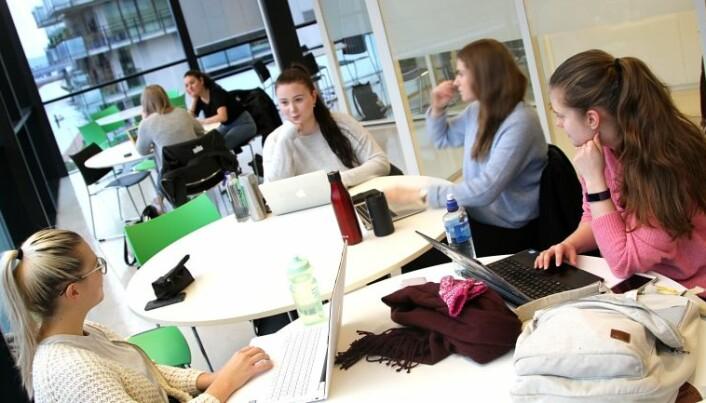 Radiografistudentene Vilde Kvenild, Erin Moen, Aslaug Sletta og Åse Funderud leser til eksamen på campus Drammen. Alle sier de tidvis kjenner på å være ekstra trøtte i eksamenstida. (Foto: Stian Kristoffer Sande)