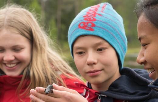 55 unge salamanderforskere på kunnskapsjakt