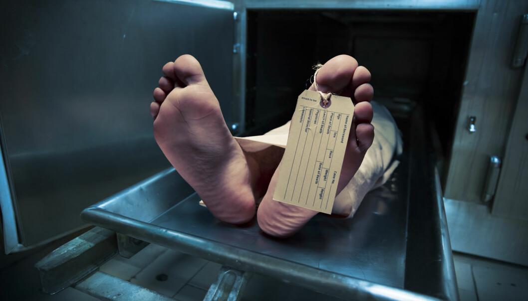 Jo mer smerte, desto verre død? Nei, ikke helt. Én av verdens ledende smerteforskere forteller hva han mener vil være den verste måten å dø på. (Foto: Fer Gregory / Shutterstock / NTB scanpix)