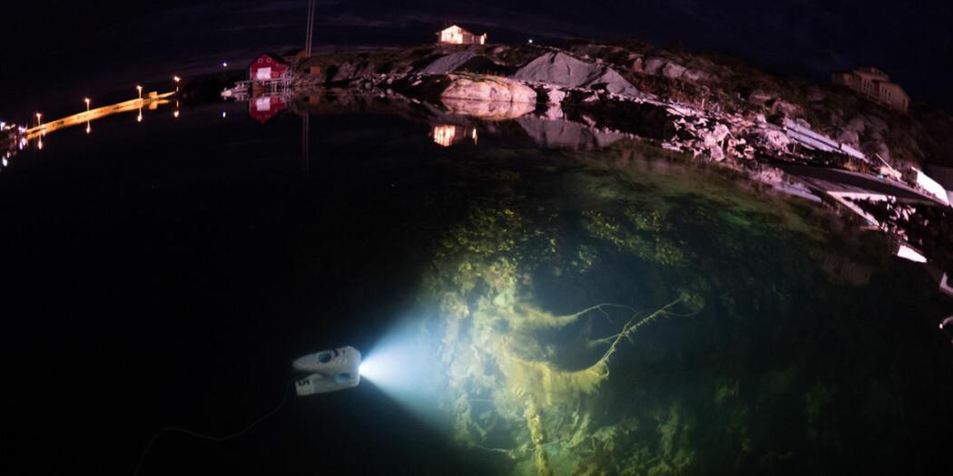 Undervannsrobototen Blueye Pioneer kan filme helt ned til 150 meter dybde. (Foto: Jonas Follesø)