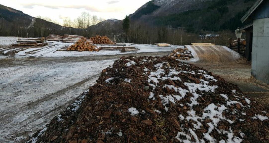 Bark fra norske sagbruk kan bli en viktig ressurs i utviklingen av nye parasittmidler. (Foto: Berit M. Blomstrand)