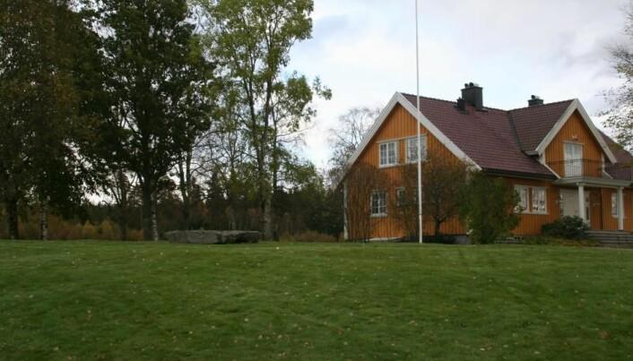 Steinen ble brukt som benk i 16 år, før en oppmerksom nabo oppdaget at det var interessante streker på den. (Foto: Kulturhistorisk museum, Universitetet i Oslo)