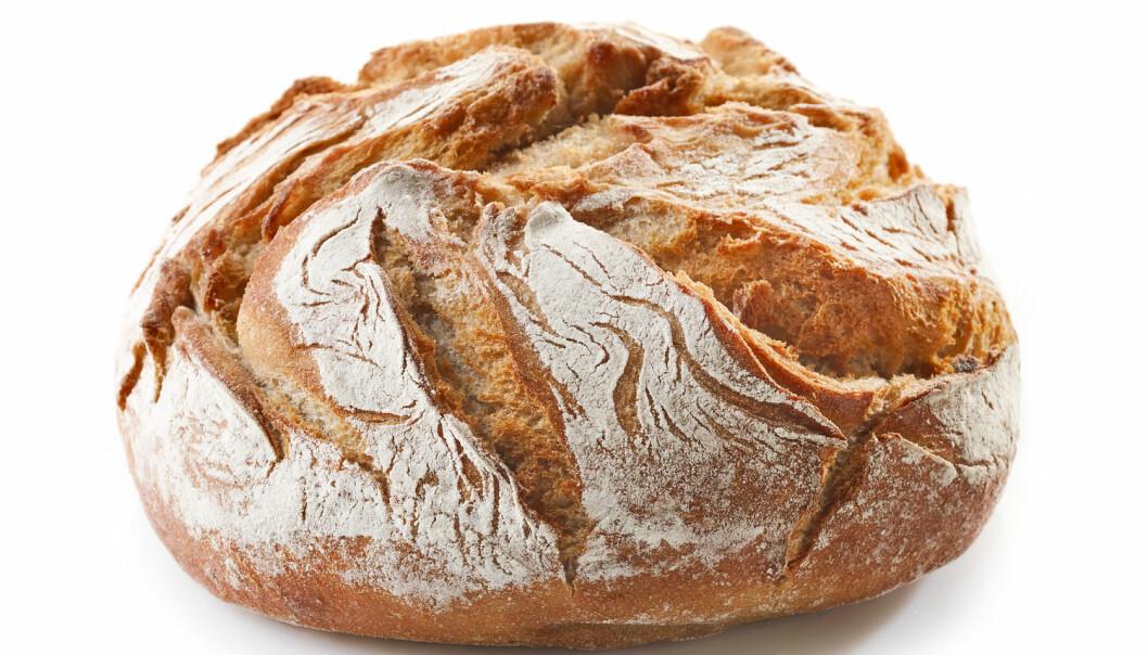 Er du ung, har lite utdannelse eller fikk servert lyst brød da du var liten – da er du mindre fristet til å spise sunt brød nå. Shutterstock/NTB scanpix