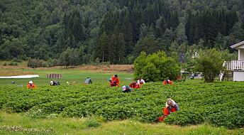 Hvordan blir Distrikts-Norge påvirket av arbeidsinnvandring?