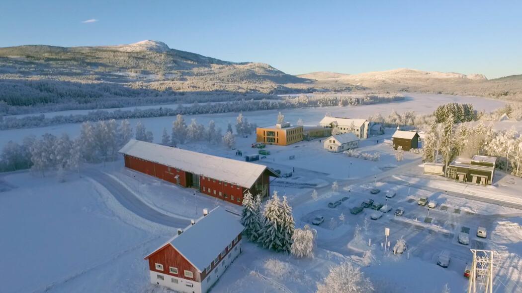 Det lavteknologiske forsøket ble gjennomført på Høgskolen i Innlandets Campus Evenstad i Hedmark. Resultatet var en halvering av strømforbruket. (Foto: Tove Lauluten)
