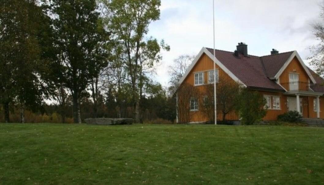 Her ligger den flate runesteinen foran huset. Den har fungert som benk en stund. (Foto: Kulturhistorisk museum, Universitetet i Oslo)