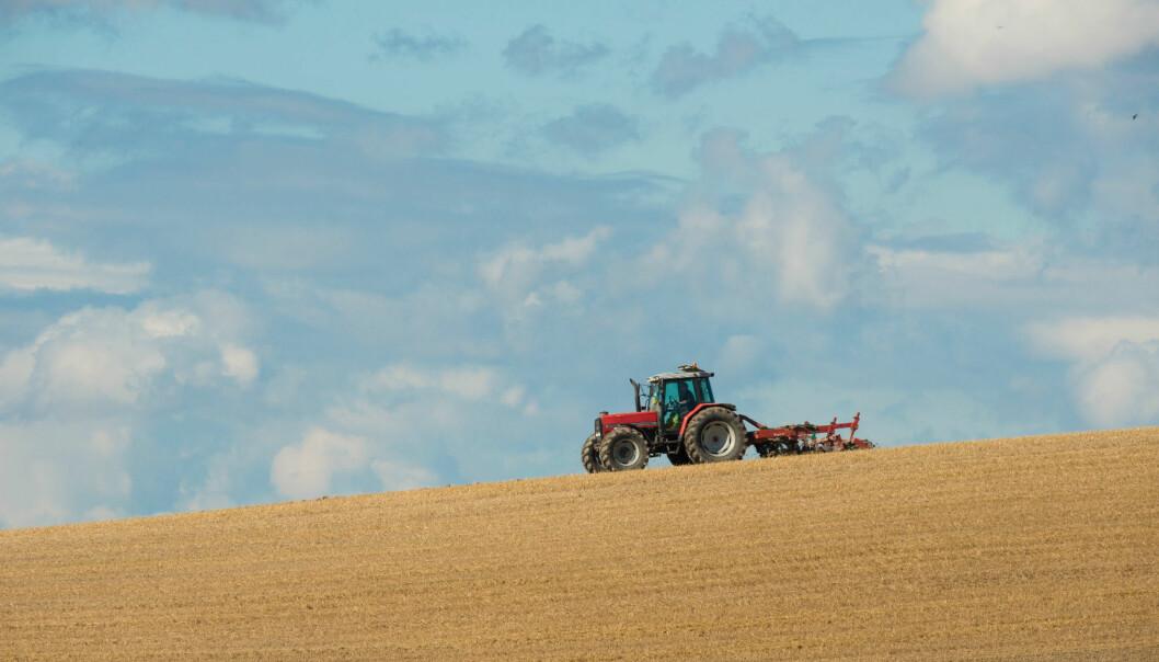 Nøkkelen til økt matproduksjon er å forbedre praksisen i den daglige gårdsdriften. (Foto: Erling Fløistad)