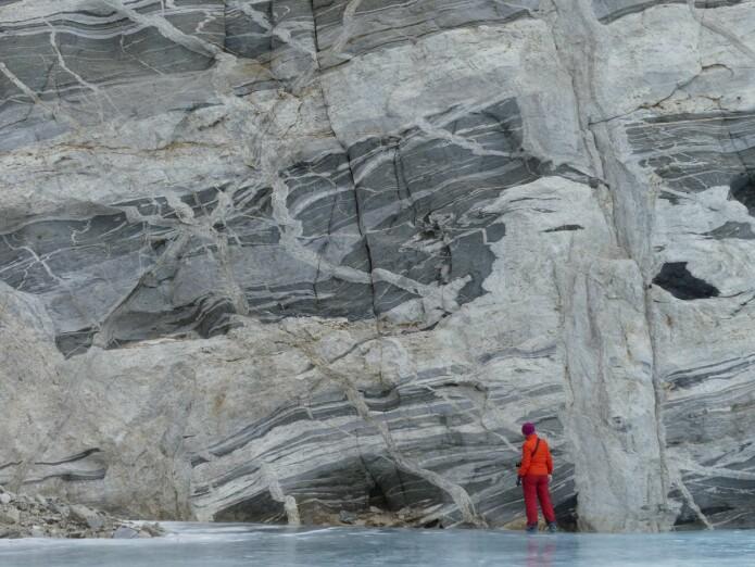 Det er de lyse mineralene som smelter først. Smelten strømmer langs sprekker i berget og størkner som magmatiske ganger (foto: Ane K. Engvik).